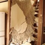 新潟県中越沖地震4