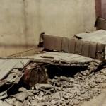 宮城県沖地震 2